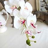 Sunlera Silk Künstliche Phalaenopsis-Orchideen-Blumen-Stamm-Blumenstrauß-Partei-Hausgarten-Dekor