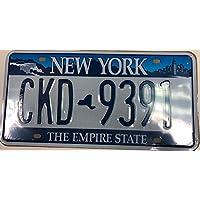 Placa Auto Americana de New York - The Empire State