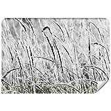 Demur Fototapete Vlies Gras-Tapeten Fototapeten Für Wohnzimmer FDB44 (XS - 220 x 154 cm)