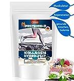 KOLLAGEN HYDROLYSAT Pulver 1000g VANILLE (90% PROTEIN 0% Fett 0% Kohlenhydrate) REINES Kollagenes Eiweiß *Kollagenes Bindegewebe* Kollagenhydrolysat Whey Hydrolysate Collagenhydrolysat Collagen Hydro