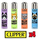 Clippers Cat - Best Reviews Guide