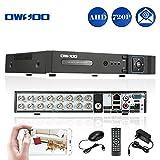 OWSOO 16CH Netzwerk DVR Digitaler Videorekorder(H. 264 720p P2P) CCTV Telefon Control Motion Detection E-Mail Sicherheitsalarm für Überwachungskamera