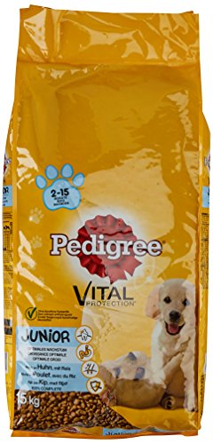 Pedigree Junior Medium Hundefutter Huhn und Reis, 1 er Pack (1 x 15 kg) -