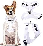 """Dexil Hundegeschirr/Hundeweste mit Warnwirkung, Aufschrift """"Deaf Dog"""", kein Ziehen, gepolstert und wasserfest, Weiß, Größe S"""