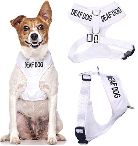 """Dexil Hundegeschirr/Hundeweste mit Warnwirkung, Aufschrift """"Deaf Dog"""", kein Ziehen, gepolstert..."""