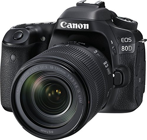 Canon EOS 80D 24.2MP Digital SLR Camera (Black) + EF-S 18-135mm f/3.5-5.6 Image Stabilization USM Lens Kit + 16GB Memory Card