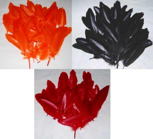 Federn / Kielfedern zum Basteln (ca. 216 Federn), Schwarz / Orange / Rot, jeweils eine - Crafts Halloween Brownie