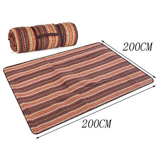 TYJ Picknick-Decken Outdoor Picknick-Matten Feuchtigkeitsbeständige Pad Schlaf-Crawling-Matte Waschbare Stoff 200 * 200CM ( Farbe : #1 , größe : 200*200CM )
