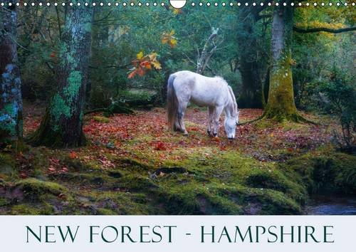 new-forest-hampshire-wall-calendar-2017-din-a3-landscape-the-new-forest-in-hampshire-with-its-heath-