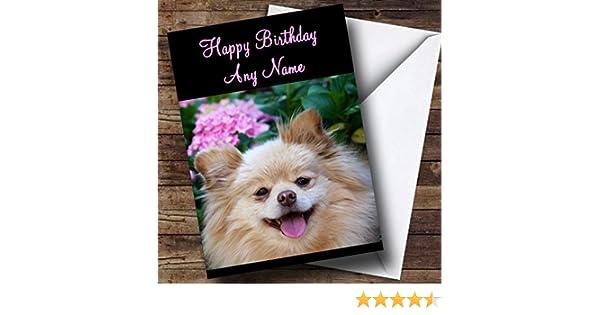 Pomeranian Dog Personalised Birthday Card Amazoncouk Office Products