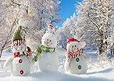 AIIKES 2.1Mx1.5M/7x5FT Bosque Fotografía Fondo de Navidad Fondo de Muñeco de Nieve Invierno Bebé Niños Fondo de Naturaleza Fondos de Vinilo para Estudio Fotográfico 11-186