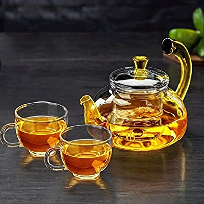 ZHAOJING Théière en verre Verre résistant à la chaleur Théière de ménage Filtre à haute température théière épaissie théière 600ml (théière + 2 tasses)