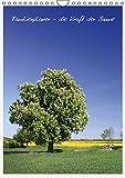 Terminplaner - Die Kraft der Bäume (Wandkalender 2015 DIN A4 hoch): Wichtige Notizen für die ganze Familie (Familienplaner, 14 Seiten)