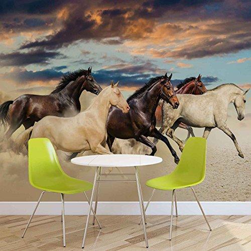 Pferde - Forwall - Fototapete - Tapete - Fotomural - Mural Wandbild - (2964WM) - XXL - 312cm x 219cm - VLIES (EasyInstall) - 3 Pieces