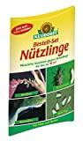 1 Bestell-Set mit Bestellgutschein Nützlinge gegen Schadinsekten - wahlweise für einen der Nützlinge