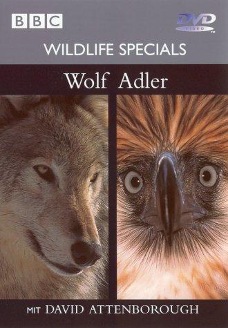 01 - Wolf / Adler