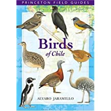 Birds of Chile (Princeton Field Guides) by Alvaro Jaramillo (2003-11-23)