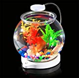 #6: Aquosis Fish Bowl with LED Light and Cable