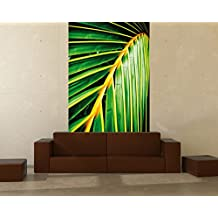 suchergebnis auf f r tapete palmenbl tter. Black Bedroom Furniture Sets. Home Design Ideas