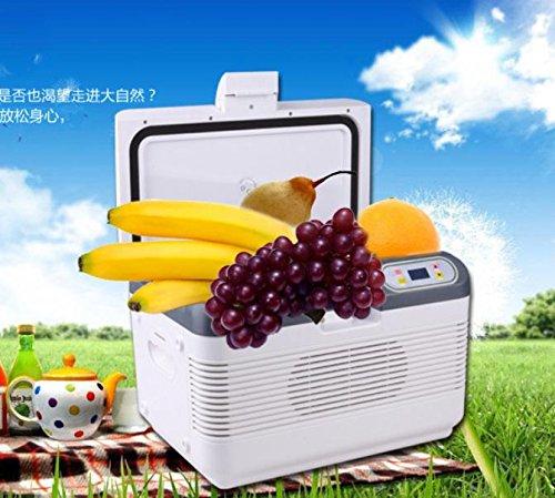 Preisvergleich Produktbild SHISHANG Portable 12L Halbleiter heiß und kalt Auto Kühlschrank Haus und Auto intelligente Kühlschrank Qualität ABS Spannung 12V Auto 220V Home Power 68 (W) Gewicht 6kg Größe: 40 * 28 * 29 * cm
