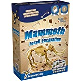 Science4you 481463 Scavo Fossile Mammut