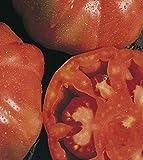 Portal Cool Tomaten Montserrat 150 Samen Samen