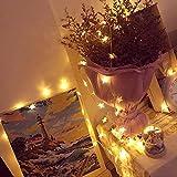 SACYSAC Schnurlichter 10 Meter 100 Lichter 8 Muster der Sternlichter können für Party im Freien Weihnachten Gartendekoration verwendet Werden