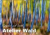 Atelier Wald - gemalt mit Licht (Wandkalender 2019 DIN A2 quer): Naturfotografie der Spitzenklasse - ohne Computereffekte! (Monatskalender, 14 Seiten ) (CALVENDO Natur)