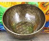 irugh Singing Bowl Nepal große Buddha Ton Schüssel Himalaya-planetarische Energie Klangschale Leben Blume Tibet Klangschale 28CM