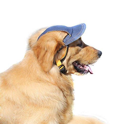 Sombrero para perro al aire libre