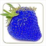 Dark Burner Coolmichibär Aroma