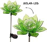 """Solar Leuchte - """" Blume & Blüte - GRÜN """" - incl. Name - Solarblume mit LED Licht - Garten Wetterfest für Außen - Figur & Gartendeko Solarleuchte Solarbetrieben - Laterne Gartenleuchte Außenbeleuchtung - Solarleuchten Dekofigur / photovoltaik - Lampe / Gartendeko - Seerose"""