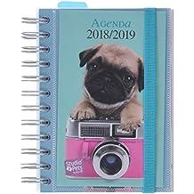 Amazon.es: agenda 2018 2019 - 3 estrellas y más