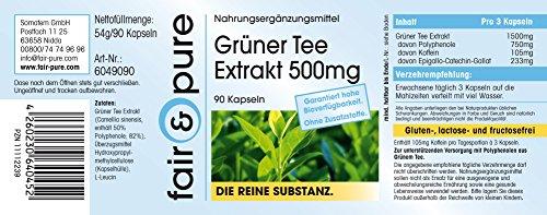 Grüner Tee Extrakt 500mg (Camilla sinensis), 50% Polyphenole (u.a. EGCG), vegan, ohne Magnesiumstearat, 90 Kapseln