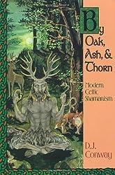 By Oak, Ash, & Thorn: Modern Celtic Shamanism (Llewellyn's Celtic Wisdom) by D.J. Conway (1994-01-08)