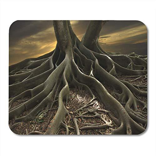Banyan Tree Roots (Deglogse Gaming-Mauspad-Matte, Trunk Root Shot of Banyan Tree in Florida Surreal Mouse Pad, Desktop Computers mats)