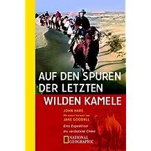 Auf den Spuren der letzten wilden Kamele