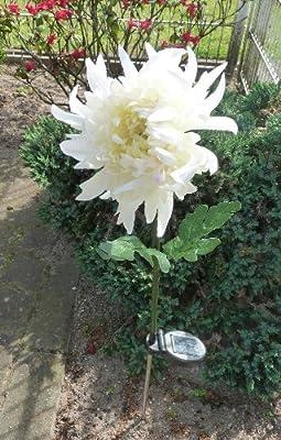 MQ Solarlampe Solarlicht Blume Chrysanteme Solarblume Solar Leuchrte Garten-Deko von MQ-Power auf Lampenhans.de