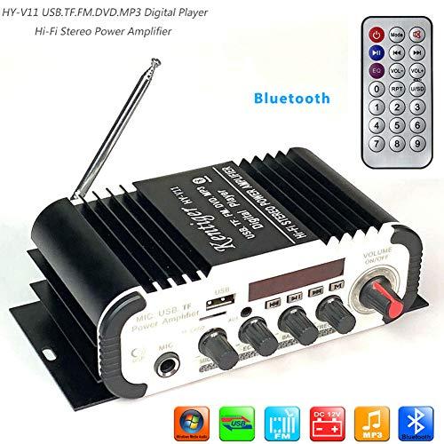 Elegant Atemberaubender Mini-Verstärker für Auto, Motorrad, Boot, HiFi-Stereo, AMP, FM, MP3, Audio 2 Kanäle