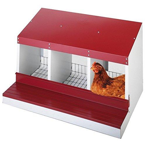 Ponedero 3 departamentos gallinas