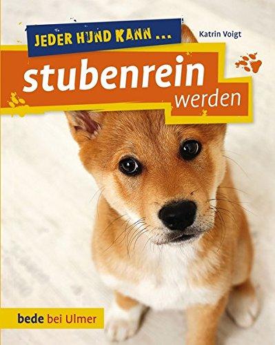 Jeder Hund kann stubenrein werden: So klappt's auch mit der Sauberkeit -