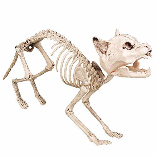 Boland 72156 Dekoration Katzenskelett, 60 cm (Halloween Katze Erschrecken)
