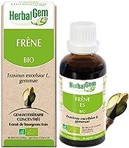 HerbalGem|Frêne Bio|Macérats-Mères de Gemmothérapie Concentrée|30 ml