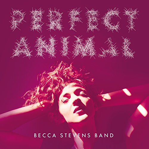 Imperfect Animals (Band Becca)