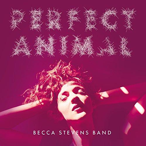 Imperfect Animals (Band Becca)