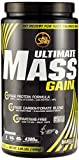 All Stars Mass-Gain, Vanille, 1er Pack (1 x 1800 g)