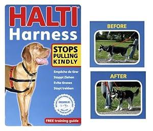 Halti Harness Black/red