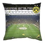 BVB Borussia Dortmund Südtribüne Kissen 40x40cm (Mehrfarbig, one size)