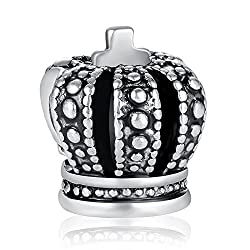 Carina Stunning Charm Fits Pandora Bracelets