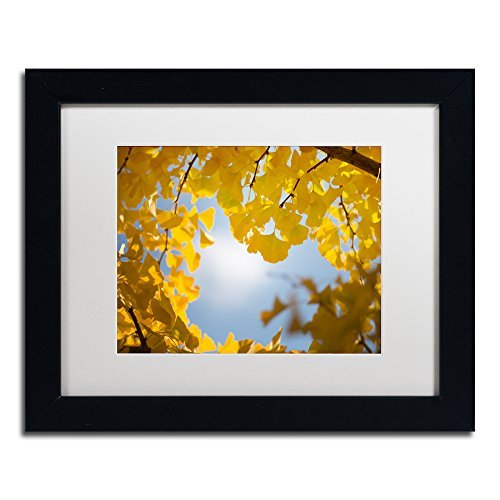 Trademark Fine Art Ginkgo Leaves in Autumn Framed Artwork by Philippe Sainte-Laudy, 11 by 14, (Autumn Leaves Framed)